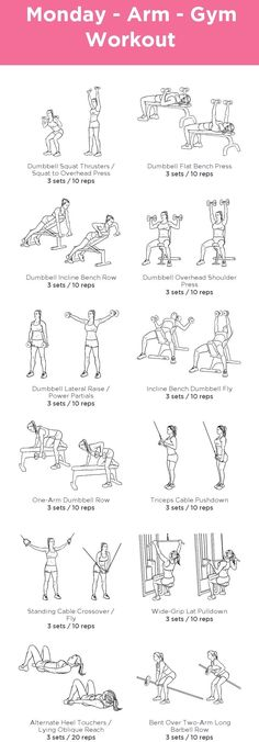 Arm Gym Workout   Posted by: AdvancedWeightLossTips.com