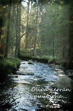 Metsäpuro keväällä River, Outdoor, Outdoors, Rivers, Outdoor Games