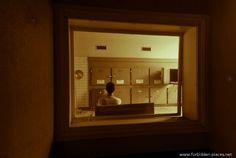 La Morgue d'Anvers