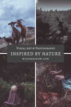 I love creating visual art that has Nature and our other-than-human kin in the center. In my website, you can find a compilation of my work as well as purchase prints of several of my photos. #naturephotography #selfportraitphotography #paganphotography #moodyphotography #darkmoodyphotography Self Portrait Photography, Nature Photography, Go Outdoors, Dark Forest, Perfect Image, My Images, Crow, Storytelling, My Photos