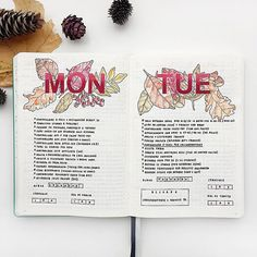 feebujo Monday and Tuesday on my Bullet Journal  #BulletJournalDailyLog