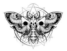 Moth art by Shawn Coss Dark Art Tattoo, Tattoo Flash Art, Tattoo Art, Dark Art Drawings, Tattoo Drawings, Death Head Moth Tattoo, Moth Tattoo Design, Moth Drawing, Paar Tattoo