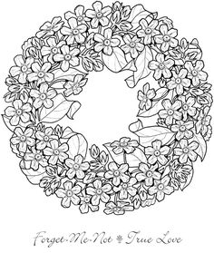 Cute Hedgehog Coloring Page Design MS