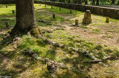 Confederate Cemetery - Resaca, Georgia