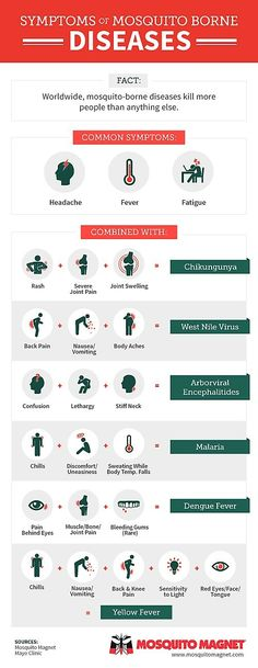 Symptoms of Mosquito Borne Diseases