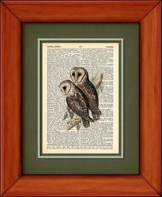 Dictionary Print  Masked Barn Owl  6 3/4 x 9 3/4  by PagesOfAges, $7.00