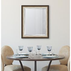60d8aea43d Framed Black and Soft Silver Radiant Swan Mirror-EC8842228 - The Home Depot