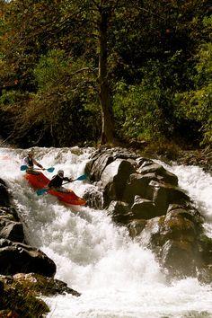 Jackson kayak Dynamic Duo - 2 times the people means 2 times the fun, right? Best Fishing Kayak, Canoe And Kayak, Canoe Boat, Fishing Tips, Bass Fishing, Trekking, Jackson Kayak, White Water Kayak, Ski