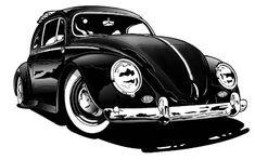 cox beetle black