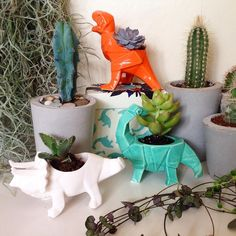 Roarsome idea for our origami dinosaur egg cups - little succulent planters! (Only £6.99!) Blog soon too follow plants from the wonderful @marketfloristbrighton @houseofdisaster ( @bluebelleandco via @latermedia )
