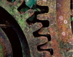 rusted gears~ www.bryandavidgriffith.com