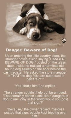 Beware of the Dog!!! I need to post a sign in myhouse, we're forever tripping over our Basset!