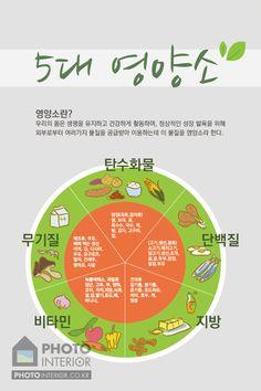 기술가정실-013 5대 영양소 - 포인트벽지, 뮤럴벽지, 교과교실, 영어전용교실, 사진벽지, 롤스크린, 블라인드, 포토벽지 Food Menu, A Food, Gluten Free Diet, Survival Food, Fun Drinks, No Cook Meals, Baby Food Recipes, Food Hacks, Good To Know