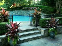 Stone, Steps, Pool, Containers Entryways, Steps and Courtyard Sisson Landscapes Great Falls, VA