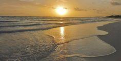 Memories Paraiso Azul Beach Resort - Resort Reviews, Deals - Cayo Santa Maria, Cuba - TripAdvisor