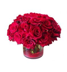 50 delicious red roses arranged in a cylinder glass vase.