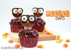 Reeses Owl Cupcakes