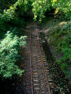 Abandoned railroad track near Fresh Pond