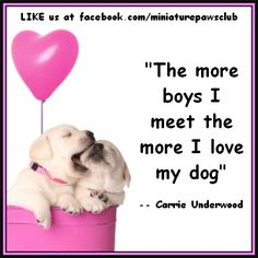 """The more boys I meet the more I love my dog"" - by http://miniaturepaws.com"
