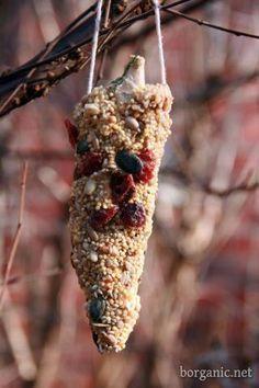Edible ornaments for feeding birds