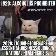 1920: alcohol is prohibited 2020: liquor stores are an essential business during a national health crisis #lol #covid19 #coronavirus #2020 #fiqueemcasa #ficaemcasa #stayhome #quarantine #socialdistancing Haha Grappig, Hilarisch, Lol, Grappige Dingen, E Online, Sarcastische Citaten, Grappige Citaten, Grappige Borden, Grappige Memes