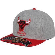 Men s Chicago Bulls Dennis Rodman Mitchell   Ness Gray Caricature Snapback  Adjustable Hat 487d54c3220