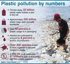 'Plastic pollution by numbers' (http://cdn.physorg.com/newman/gfx/news/hires/2012/plasticpollu.jpg)