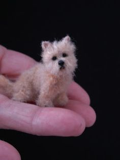 1:12 Cairn Terrier by CDHM Artisan Lucy Maloney of Designer Dog Miniatures, www.cdhm.org/user/doglady