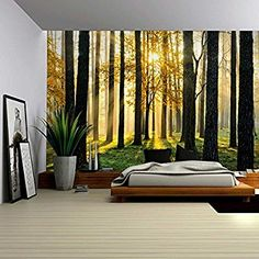 Amazon.com: Wall26 A Peaking View Through the Forest of the Morning Sunrise - Wall Mural, Removable Sticker, Home Decor - 100x144 inches: Home & Kitchen