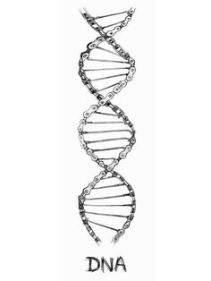 Dna Replication Video Activities For Kids Student Cycling Tattoo, Bicycle Tattoo, Bike Tattoos, Motorcycle Tattoos, Sleeve Tattoos, Dna Tattoo, Arte Dna, Dna Drawing, Cycling T Shirts