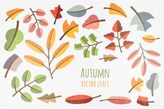 Autumn graphic pack by Vítek Prchal