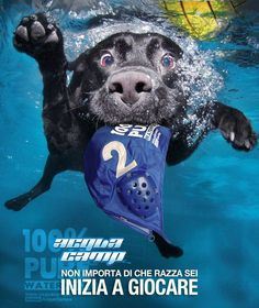 Waterpolo propotion poster