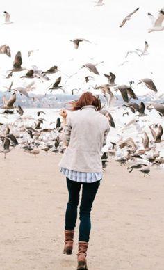 Birds//