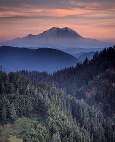 Today's location: Mount Rainier, Washington  Photographer:@ttarte  Mount Rainier is the highest mountain of the Cascade Range of the Pacific Northwest, and the highest mountain in the state of Washington. It is a large active stratovolcano located 54 miles south-southeast of Seattle. •  Selected by:@jeff_bell_photos  #mtrainer #wa#wilderness #cascadia #washington #pnw #washingtonexplored #nw #northwest #picoftheday #trail #instagram #summer