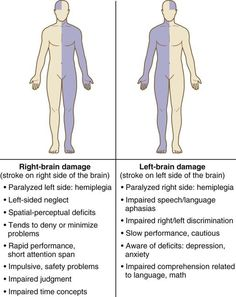Right Brain Damage vs. Left Brain Damage You are in the right place about business career ideas Here we offer you the most beautiful pictures about the new career ideas you are looking for. Nursing Degree, Nursing Career, Nursing Tips, Nursing Programs, Rn Programs, Ob Nursing, Nursing School Notes, Nursing Schools, Medical School