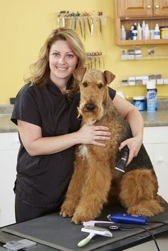How To Groom An Airedale | Modern Dog magazine