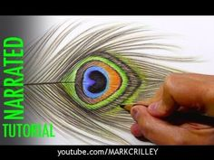 Basic Colored Pencil Techniques: Layering for 3-Dimensionality - YouTube