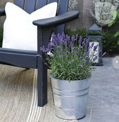 Placing a few blooming plants in inexpensive buckets around the backyard provides instant colour and texture. And using a variety like lavender also gives off a heavenly scent.
