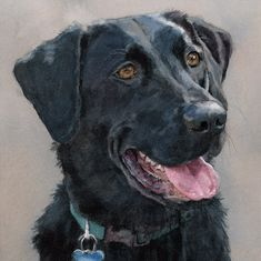 Black Labrador Retriever Print of Watercolor Dog Painting by EdieFaganArt on Etsy. Maddie loves her pet portrait - she's the perfect black lab puppy!
