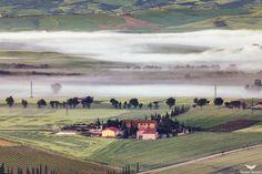 Toscana Fog