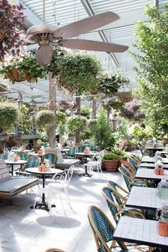 The potting shed The...