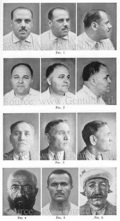 Face Plates: Races, Sub-Races and Ethnicities of Europe, Middle East, Africa, Asia, etc., Carleton Stevens Coon