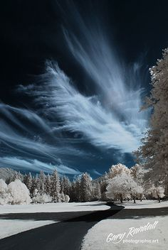 Pinecone in Infrared. The clouds were cool this afternoon while I was running errands. This is the golf course near where I live. by Gary Randall