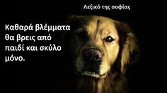 Greek Quotes, True Words, Self Improvement, Picture Quotes, True Stories, Animals And Pets, Cute Dogs, Sayings, Memes