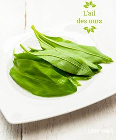1000 images about pices et fines herbes on pinterest for Ail sauvage cuisine