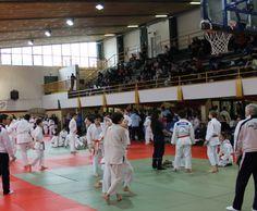 Pienone a Mestre, prova a squadre vinta dal Judo Vittorio Veneto