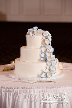 #wedding cake #Michigan wedding #Chicago wedding #Mike Staff Productions #wedding details #wedding photography #tiered