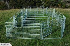 Sheep yard panels, gates and drafting race | Trade Me