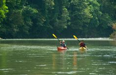 Trustworthy information on kayaking/rafting in El Valle de Anton, Panama and other topics, provided by a community of experts. Work Abroad, Panama City Panama, Rafting, Canoe, Kayaking, The Good Place, How To Make Money, Good Things, River