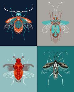 Adam Gale beetle prints - Little White Whale - - Adam Gale beetle prints - Little White Whale Art And Illustration, Animal Illustrations, Motifs Animal, Atelier D Art, Bug Art, Desenho Tattoo, Insect Art, Art Inspo, Painting & Drawing
